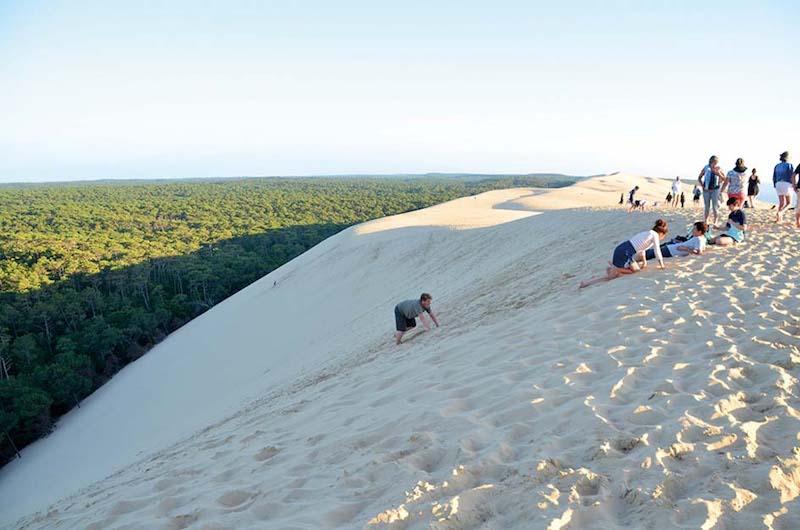 4つんばいで砂丘を登る人(でも実は階段がある)。