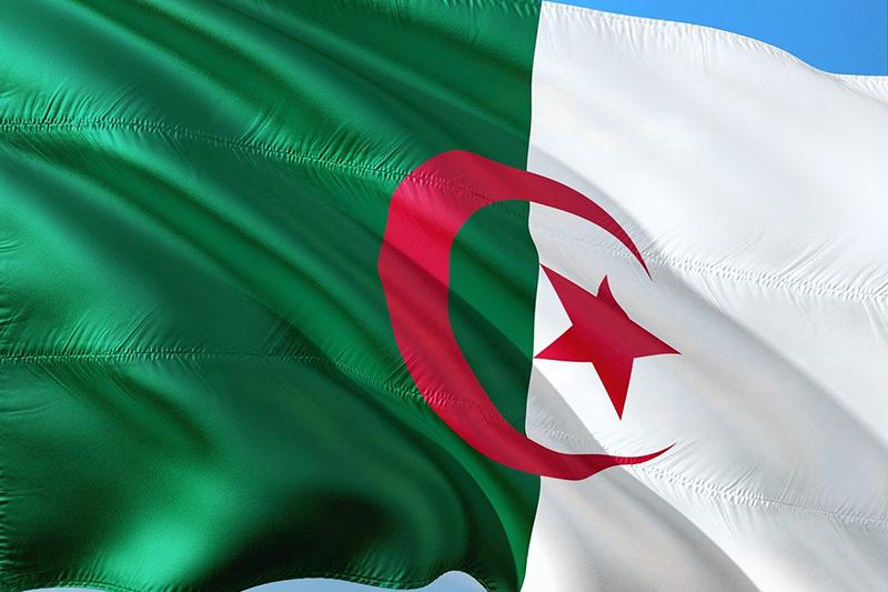 仏アルジェリア和解報告書